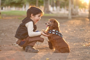 Pet photographer does cute Star Wars shoot to celebrate Chewbacc